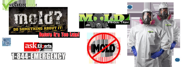 Michigan-Mold-Remediation-Mold-Removal-Macomb-Oakland-Wayne-County-MI