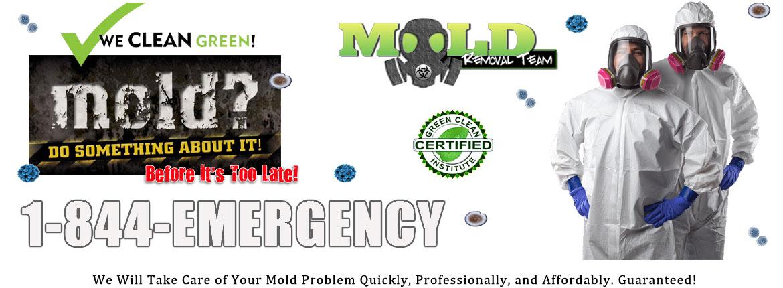 Michigan-Mold-Removal-Testing-Remediation