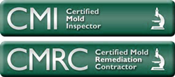 Mold-Removal-Certified-Contractor-Michigan