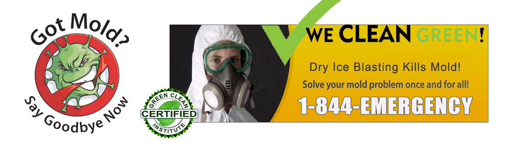 Mold-Removal,-Dry-Ice-Blasting-Cleaning-MI