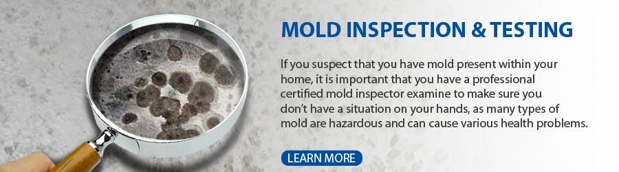 mold-inspection-testing-michigan