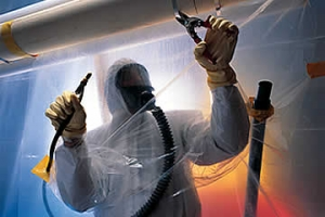 mold removal michigan